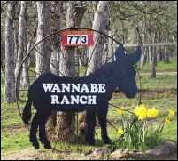 Wanna Be Ranch